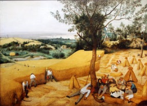 The Harvesters, 1565 Pieter Bruegel the Elder (Netherlandish, ca. 1525–1569) Oil on wood. This is one of six panels painted by Pieter Bruegel the Elder for the suburban Antwerp home of the wealthy merchant Niclaes Jongelinck, one of the artist's most enthusiastic patrons—Jongelinck owned no less than sixteen of Bruegel's works. The series, which represented the seasons or times of the year, included six works, five of which survive. The rise of Protestantism in the northern regions also resulted in new secular subject matter, to Pieter Brueghel's series (including The Five Senses, Times of the Day, and The Seasons).