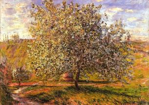 Tree in Flower near Vetheuil, 1879. Claude Monet. Impressionism. Beauty grows on trees!!!